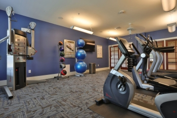 Mariposa Apartment Homes at Spring Hollow - Fitness Room